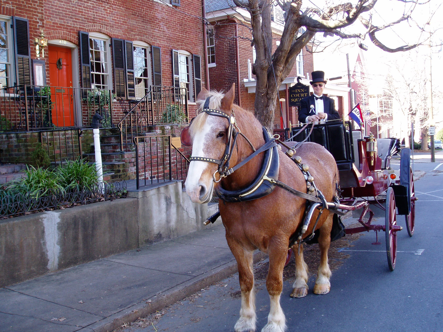 Horse and Carriage During Court Square Days